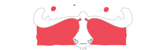 Loose Moose Catering